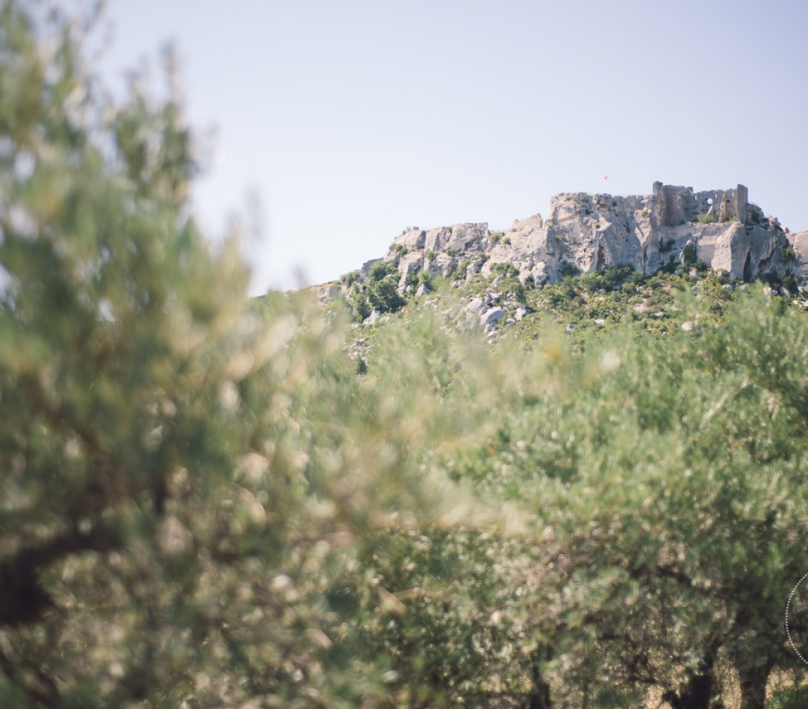 Mariage Mas des Thyms Baux de Provence Photographe de Mariage-9