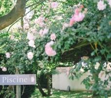 SJ Studio Photographe de Mariage Arles-Provence-Camargue-77